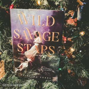 Wild Savage Stars and Bright Raven Skies conclude the Sweet Black Waves trilogy by Kristina Perez - a retelling of Tristan and Isolde for YA.