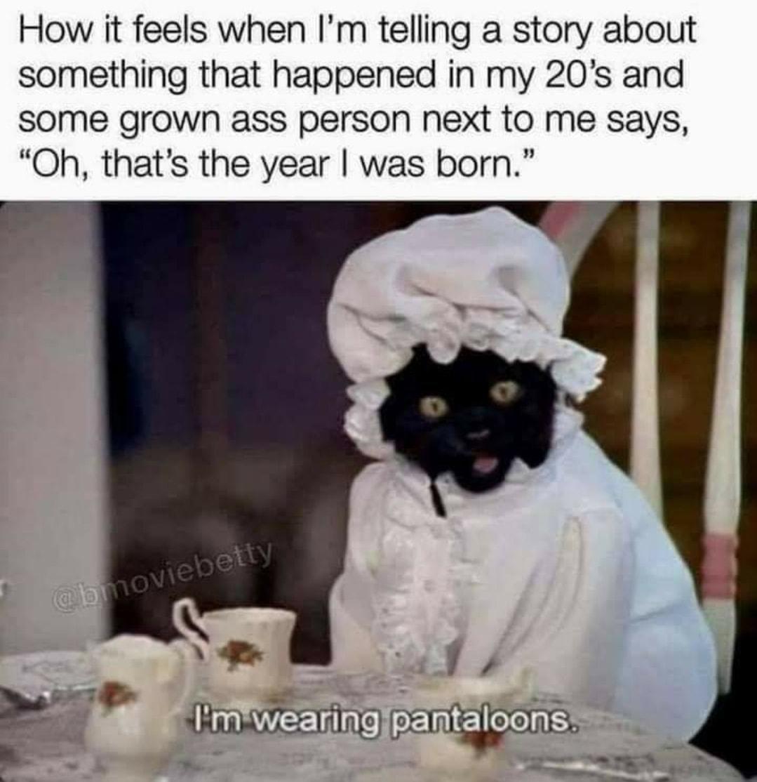 I'm wearing pantalooms Salem meme.