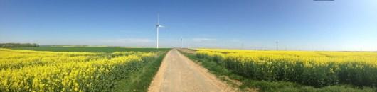 Par éolien panoramique