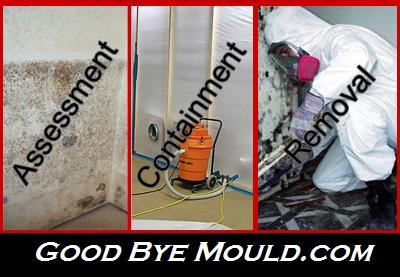 UNMARKED VEHICLES  Mould Removal & Testing – Since 2011