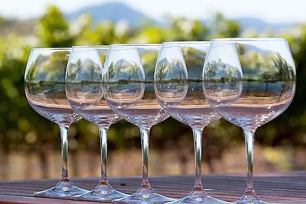 bargain wine glasses