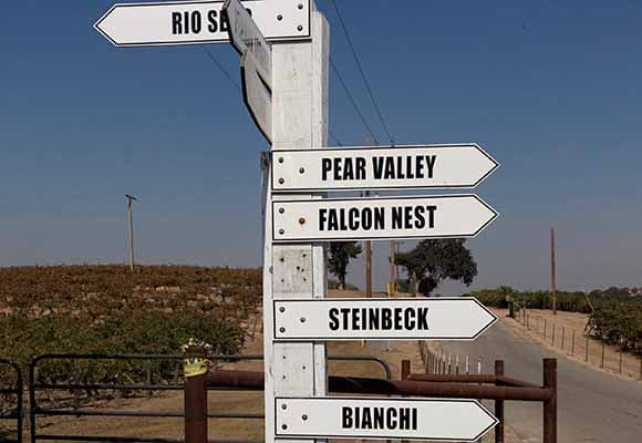 Wine Trails in Paso Robles