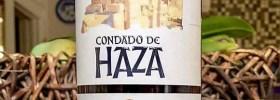Condado de Haza