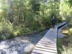 Wooden path across stream and bog, Furi.