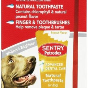 peanut butter flavor brush and toothpaste kit for dogs front view