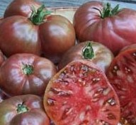 Heirloom & Specialty Tomatoes