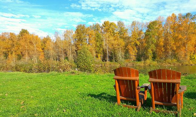 Riverside retreat relax on the willamatte