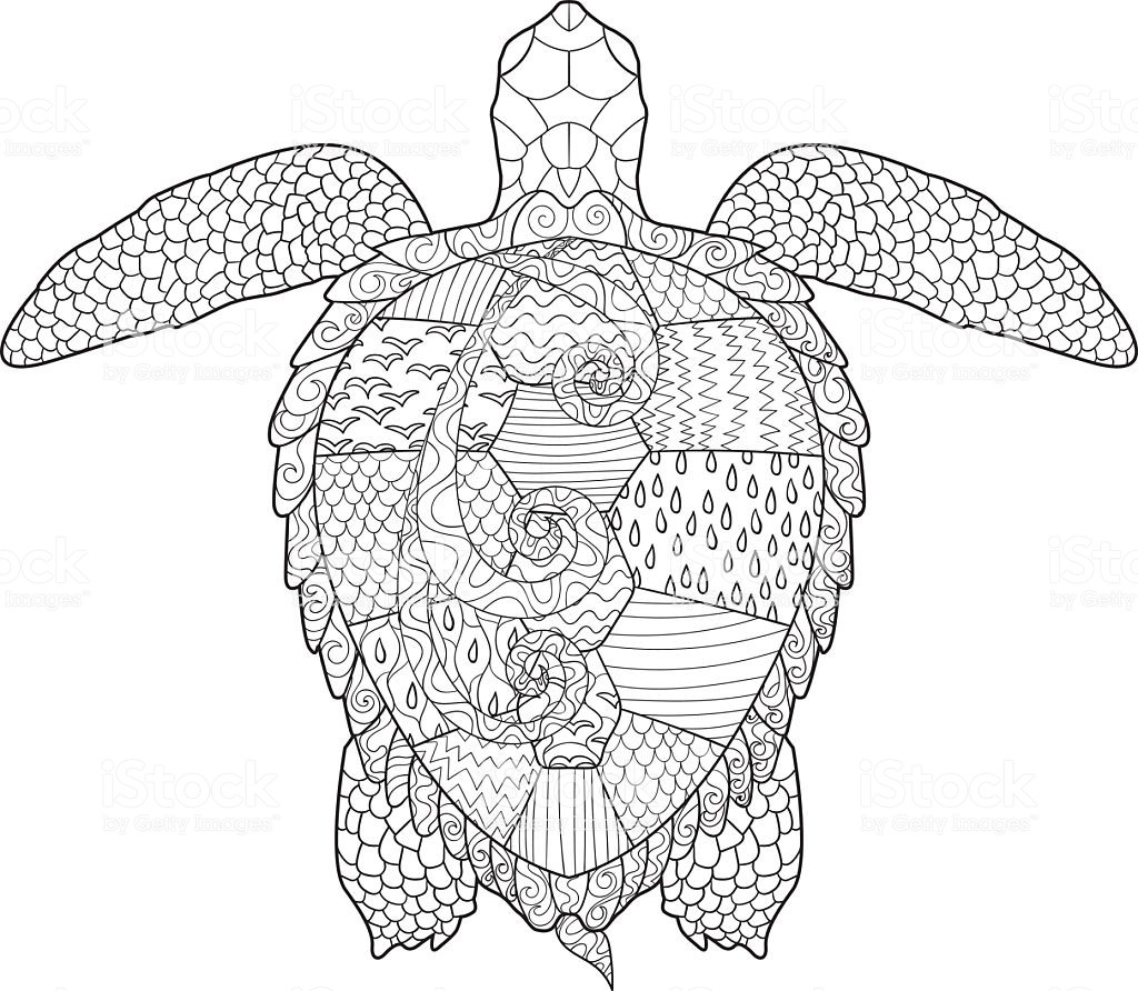 23 Of The Best Ideas For Turtle Adult Coloring Pages