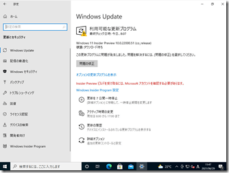 Windows11-IPUpdate02