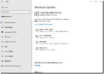 Windows11-IPUpdate06