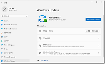 Windows11-IPUpdate17