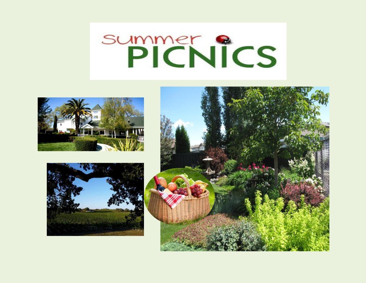 Summer Picnics Menus