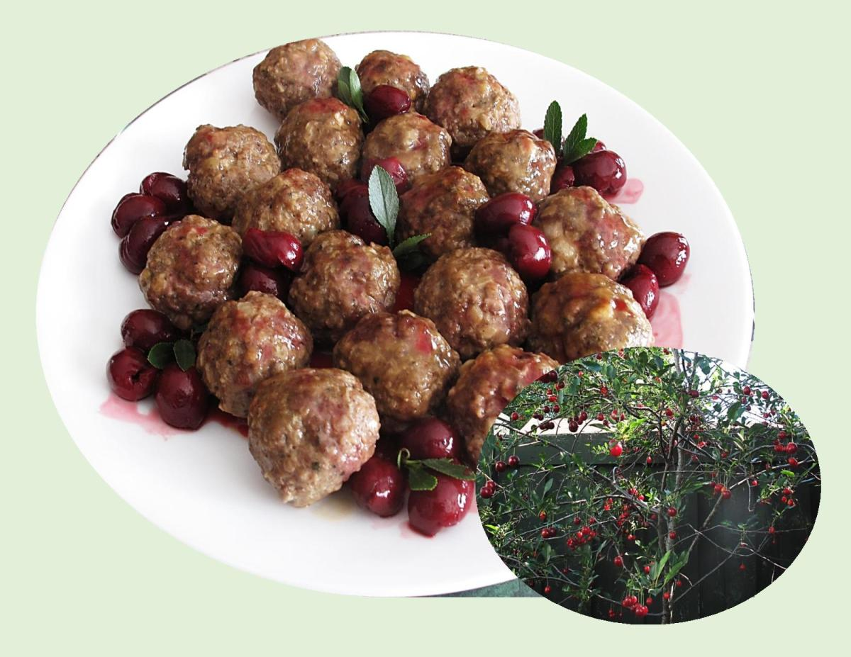 Belgium Meatballs w/ Sour Cherries