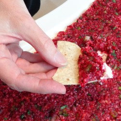 Cranberries Gone Wild dip with chip