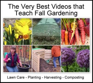 Best How-To Videos for Fall Gardening