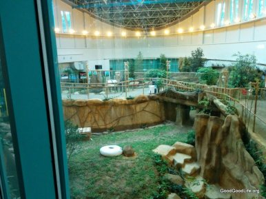 view of the Panda's Playpen or enclosure