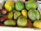 Round Papayas