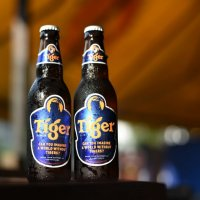 JOIN TIGER BEER IN TAKING A STAND FOR TIGERS