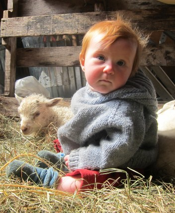 Baby, Lamb