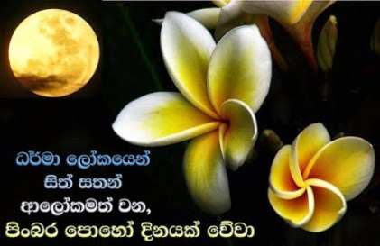 sri lanka poya day (13)