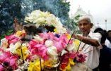 sri lanka poya day (27)