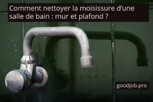 Comment Nettoyer Les Moisissures Du0027une Salle De Bain : Mur Et Plafond ?