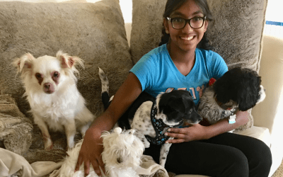 Bay Area Teen Who Lived In An Orphanage Now Saves Homeless Dogs