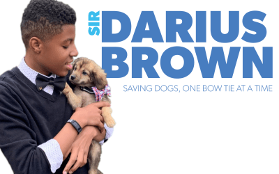 Saving Dogs, One Bow Tie At a Time