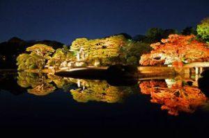 六義園紅葉と大名庭園のライトアップ