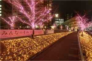 大崎目黒川沿いの冬の桜