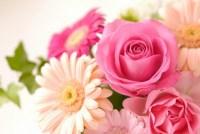 卒業式にプレゼントする花の種類や人気のある花束のタイプと値段は!