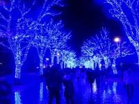 青の洞窟 原宿からが渋谷より良い理由はアクセス !? 開催の場所と期間