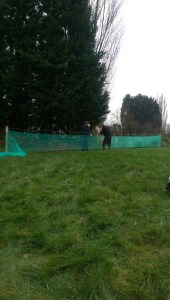 Netting to keep the geese in