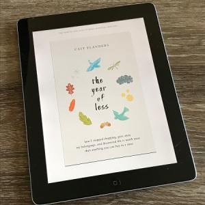 Picture of the cover of the book The Year of Less