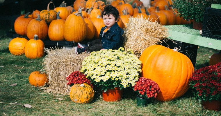 4 Fall Festivals + 9 More Family-friendly Events This Weekend