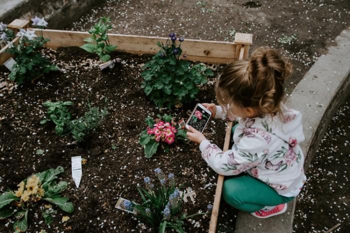 Eight Gardening Tips for Spring
