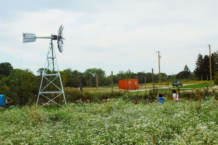 D-Town Farm Detroit