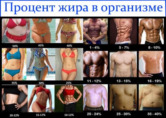 Тренировки для похудения в домашних условиях. Самые эффективные упражнения для мышц живота