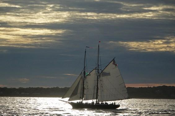 170622 Sail Boston fleet leaving Cape Ann for Halifax (18a)