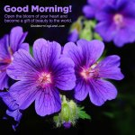Most Innovative Good Morning Flowers With Images Good Morning Images Quotes Wishes Messages Greetings Ecards