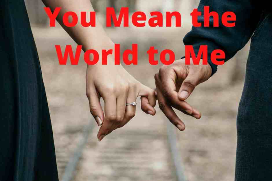 Best 'You Mean The World To Me' Quotes Image 2