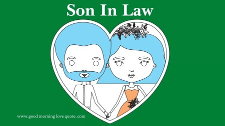 101 perfect son in law quotes