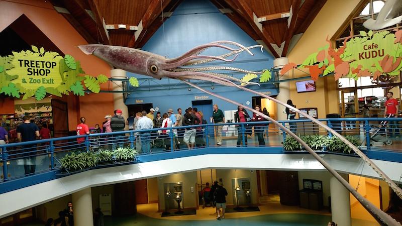 blog usa, zoo st louis missouri, découverte états unis, forest park, saint louis zoo, zoo missouri, visiter zoo saint louis, promenade forest park, quoi faire a forest park
