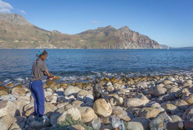 Kaapstad vakantie Zuid-Afrika Hout Bay