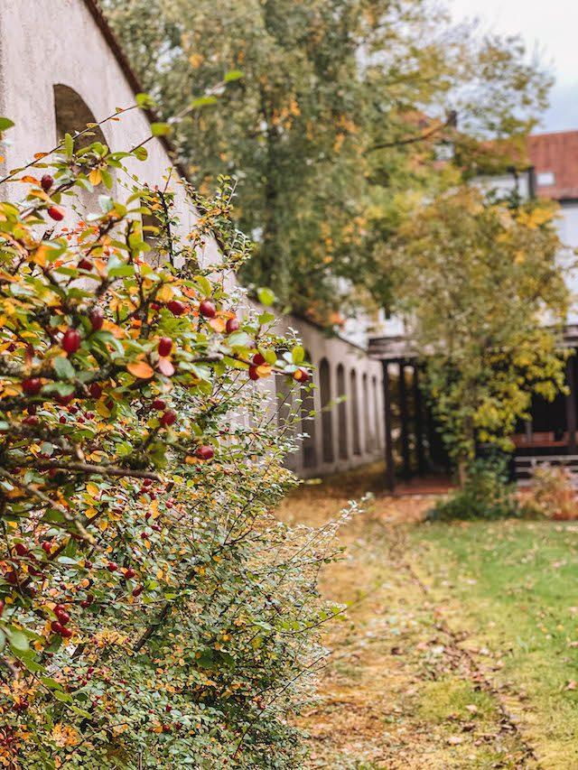 Bad Woerishofen Kuroase-tuin