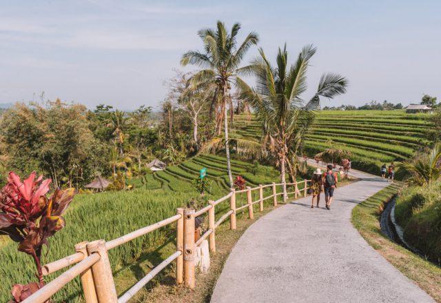 Bali Attracties Jatiluwih Rijstterrassen Rundweg