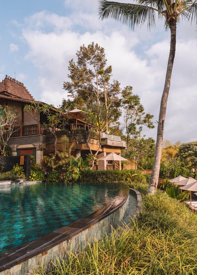 Zwembad Hotel Ubud