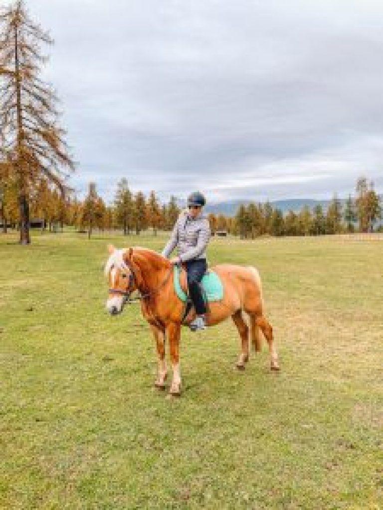 Zuid-Tirol Zuid-Tirol Paardrijden
