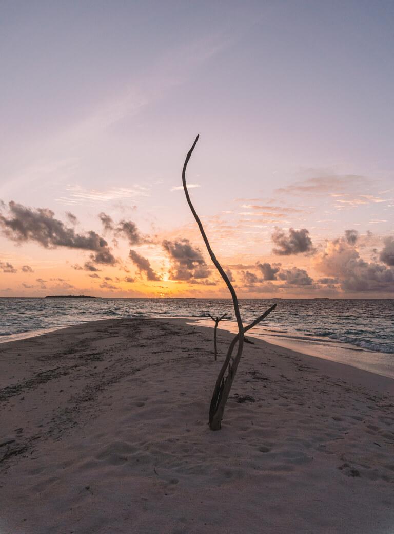 Reethie Beach Resort, het mooiste eiland van de Malediven