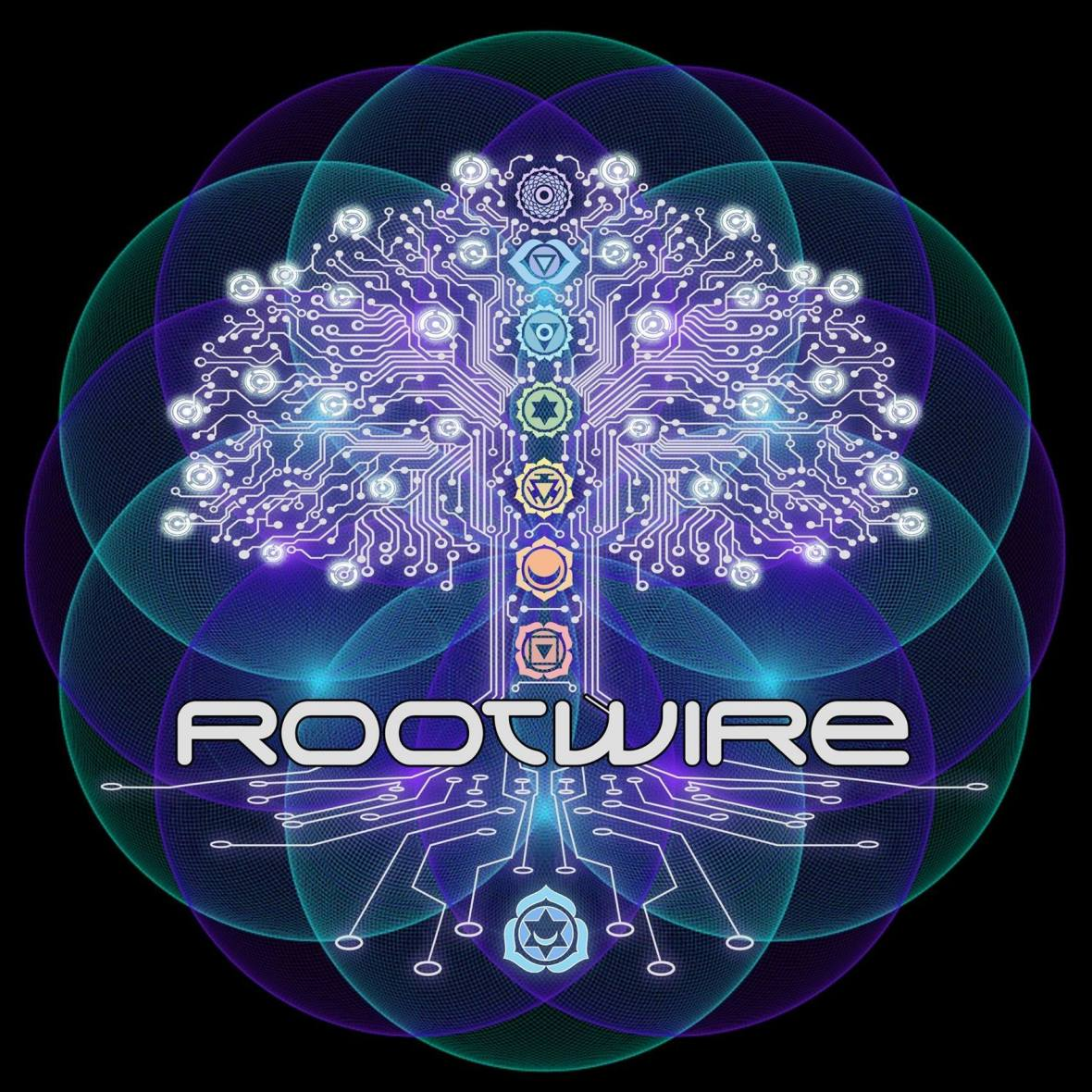Rootwire 2017: An Experience Far From Traditional